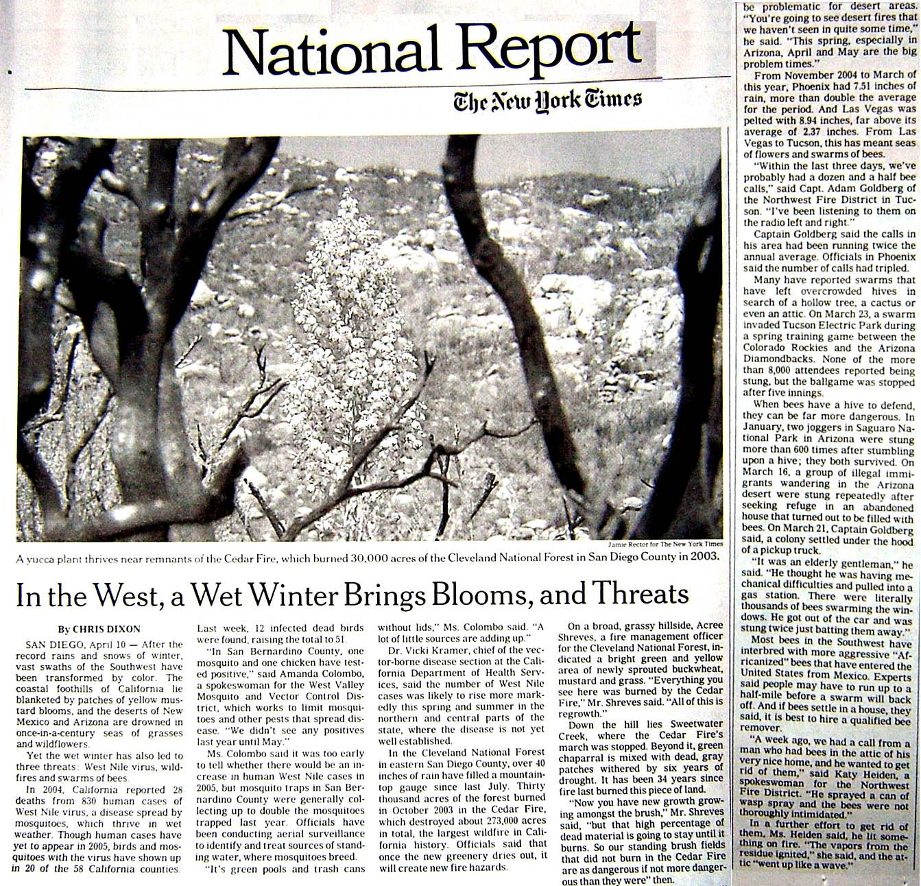 NYT News